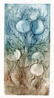 drypoint seedheads188