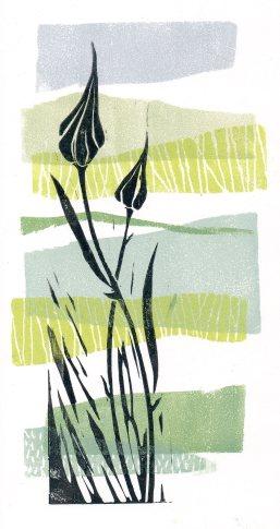 Layered Linoprinting