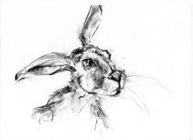 hare lithograph